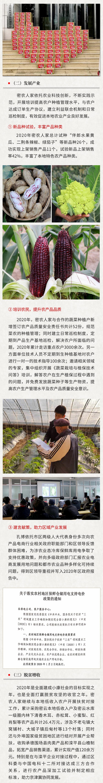 03企业社会责任报告119_03.jpg